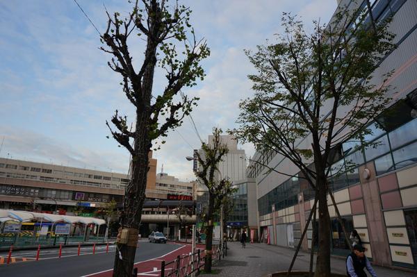 阪急で光の回廊準備DSC05429