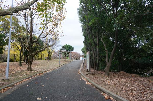公園から道を進む
