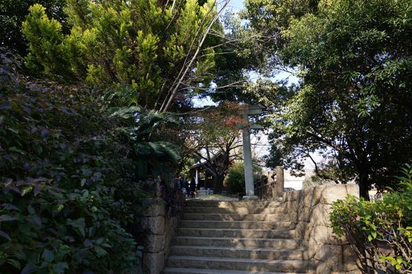 佐和良義神社の鳥居