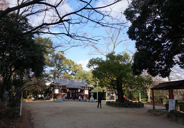 佐和良義神社の境内