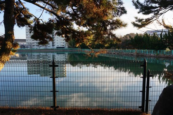5春日神社のほう左側池に風景が写る