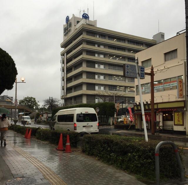 樹種更新の中央通り