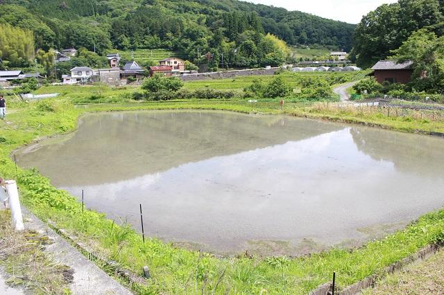 日本酒プロジェクト田植えをする場所