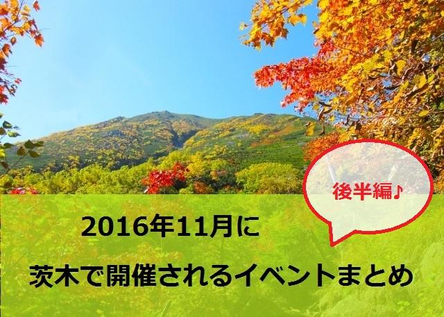 11月後半イベントまとめバナー紅葉の風景