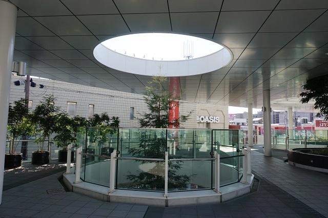 JR茨木東口ロータリーの植木3