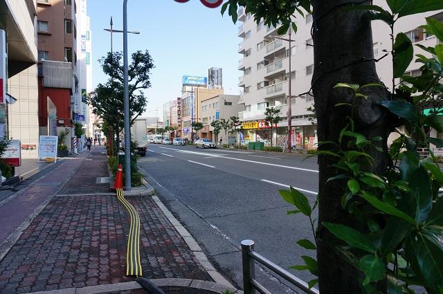 エキスポロード11月11日駅方面