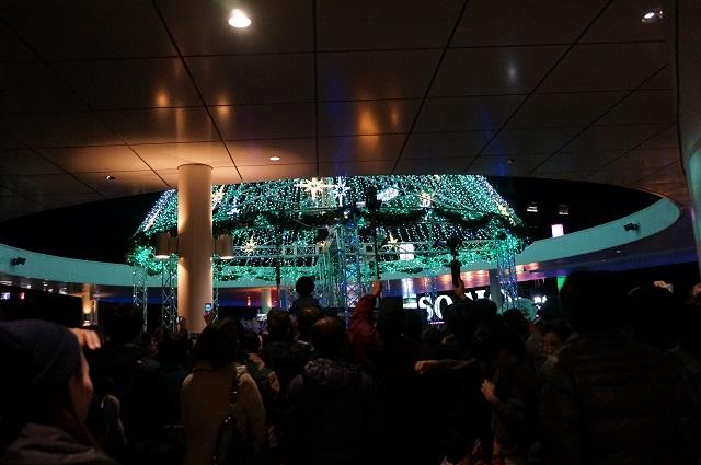 早稲田摂陵観客の様子2DSC02527