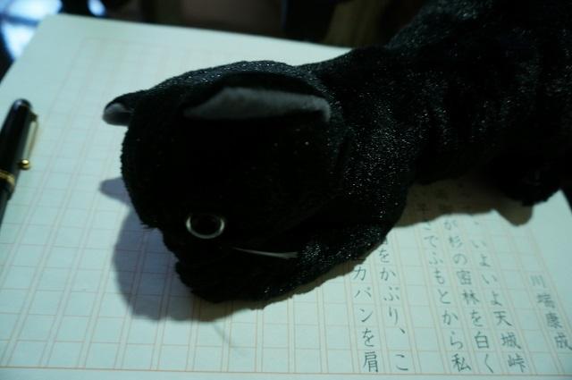 なりきり康成の黒猫DSC02688