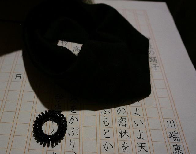 なりきり康成ヘアバンドDSC02684
