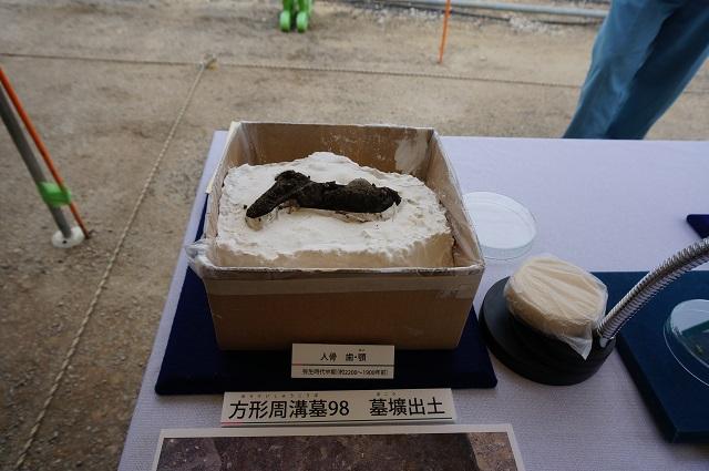 方形周溝墓から出た人骨などDSC04081
