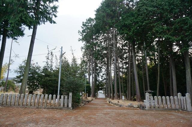 太田神社参殿から鳥居のほうDSC03897
