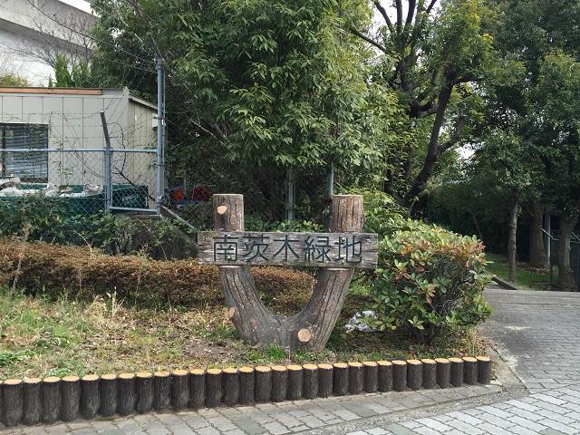 沢良宜そば南茨木緑地IMG_5882