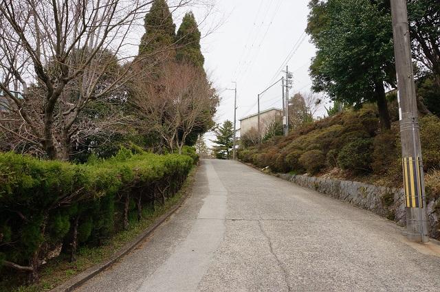 茨木里山センターへの坂道2DSC05129