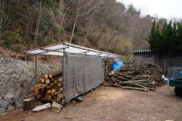 茨木里山センターにある伐採した木DSC05084