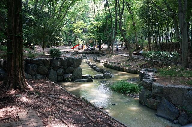 西河原公園の小川DSC06621
