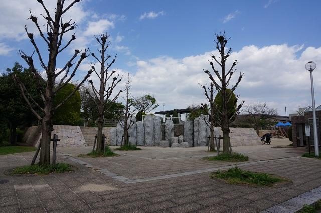 2017年4月桑田公園DSC05498