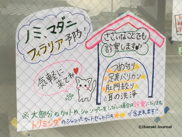 茨木元町どうぶつ病院案内チラシIMG_0315