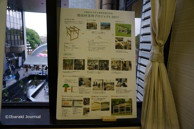 環境フェア間伐材プロジェクト展示DSC09973