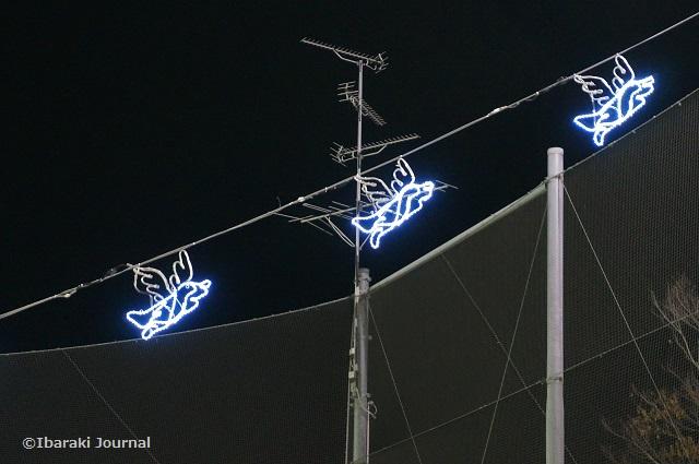 2017光の回廊鳩イルミ1DSC00110