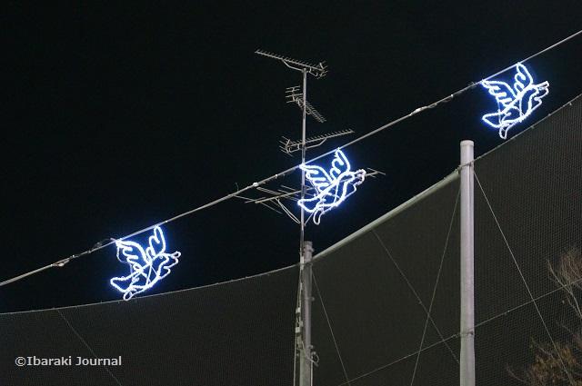2017光の回廊鳩イルミ2DSC00111