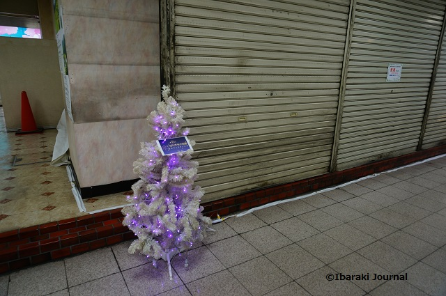 茨木ショップタウンのツリーDSC00683