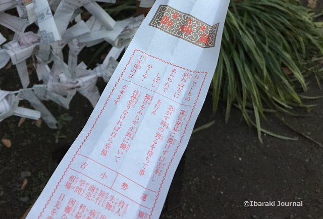 茨木神社のおみくじアップ