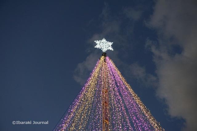 JR茨木のツリーが点灯DSC00900