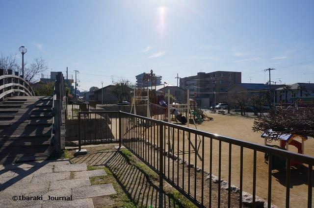 0324桑田公園の様子DSC02634