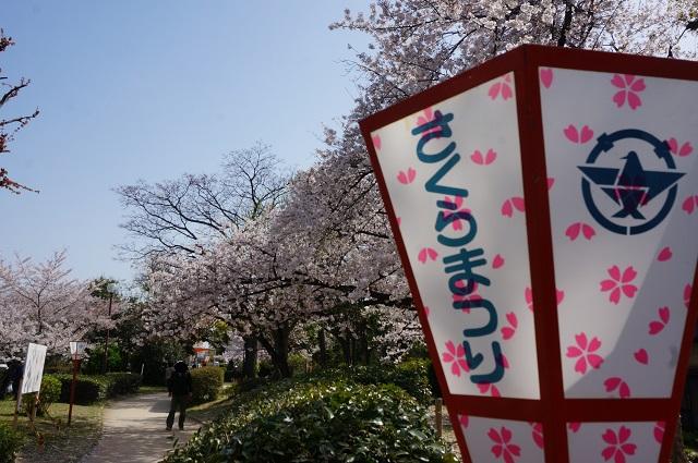 元茨木川緑地さくらまつり風景DSC03134
