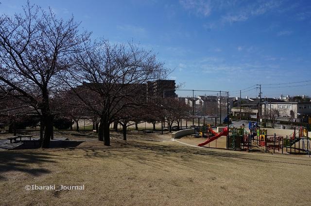 0324水尾公園遊具のほうDSC02673