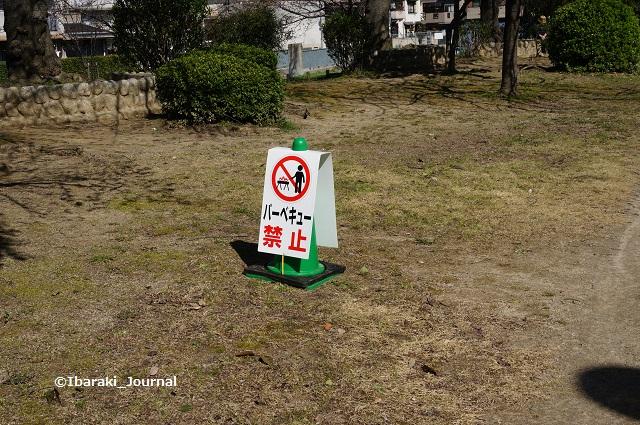 元茨木川緑地バーベキュー禁止DSC02686