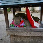 野々宮の天神社の神牛DSC01377