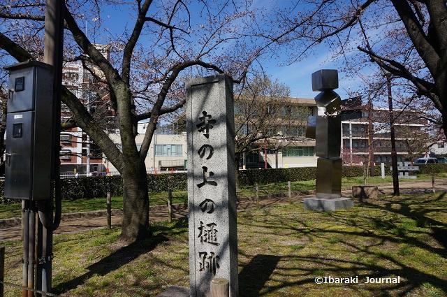 元茨木川緑地寺の上樋跡DSC02700