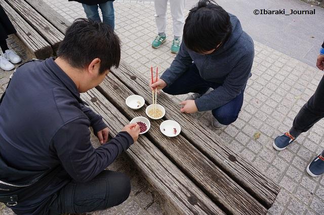 4月いばらき遊び豆競争中DSC03431