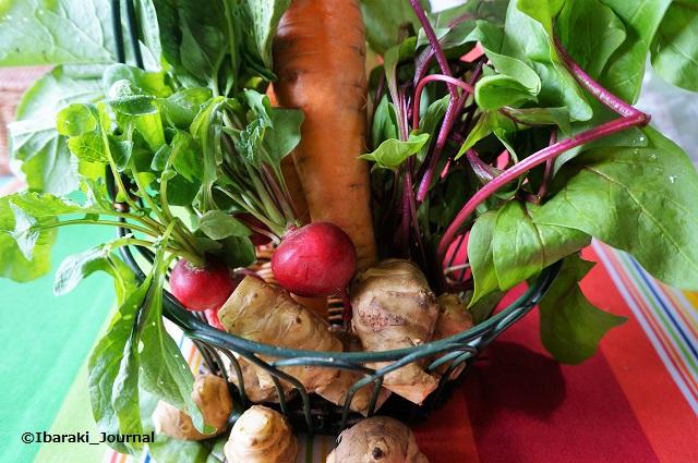 天空の森農園買ったお野菜DSC03752
