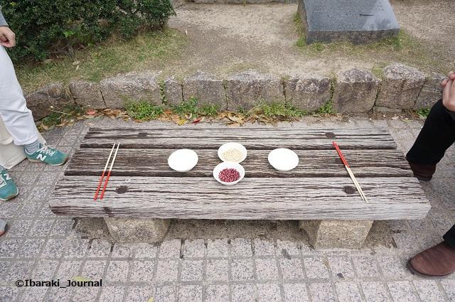 4月いばらき遊び豆競争準備DSC03423