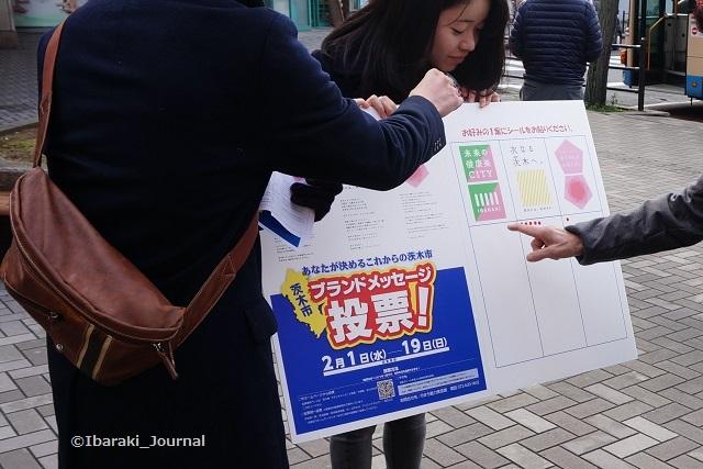 茨木市ブランドロゴ投票