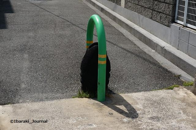 竹橋町車止めのところDSC04507