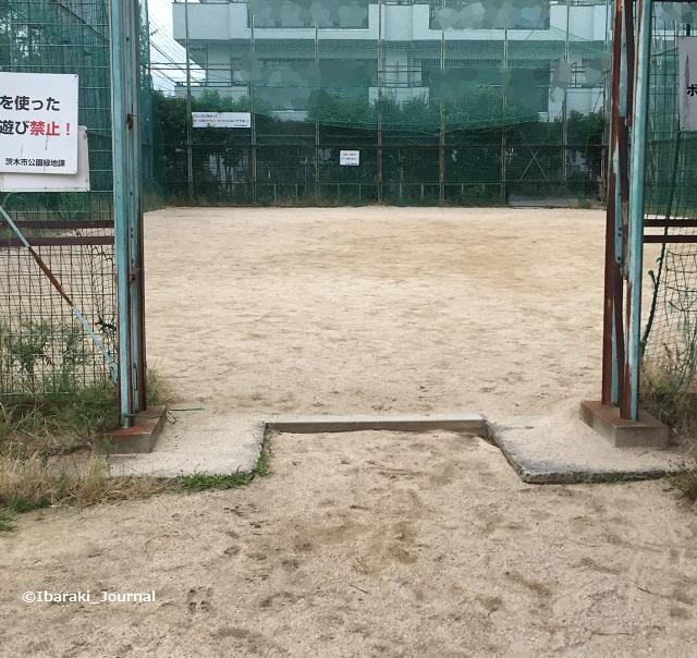 風景中穂積公園Image-1