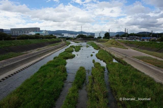 安威川を西河原新橋からDSC05913
