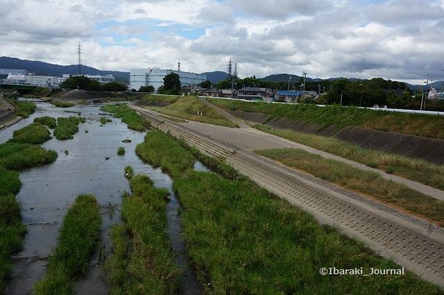 安威川8月23日東側DSC05919