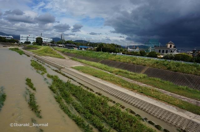 8月24日安威川東側DSC05933