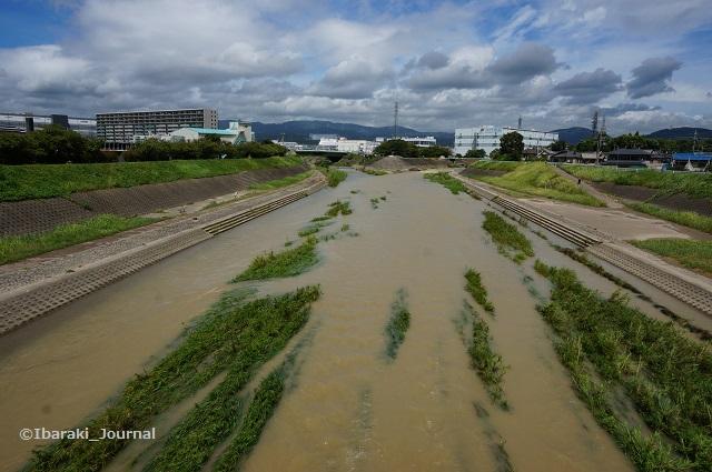 8月24日安威川の様子DSC05931
