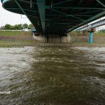 9月8日西河原新橋の下の安威川DSC06120