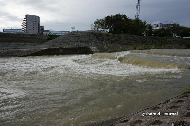 9月8日安威川の滝のところDSC06180