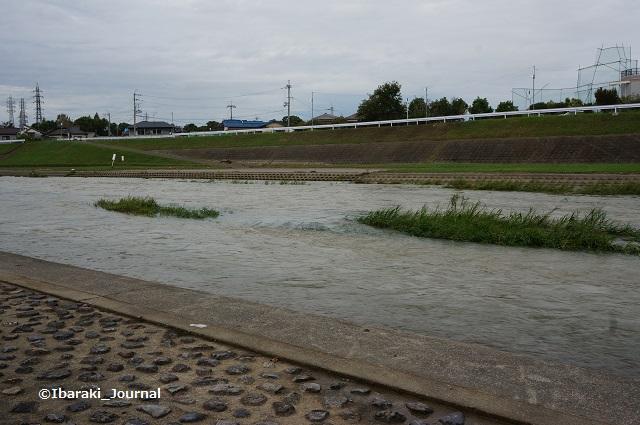 9月8日安威川の西側を北へ1DSC06123