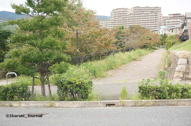 23彩都あさぎ三丁目バス停付近の道DSC06533