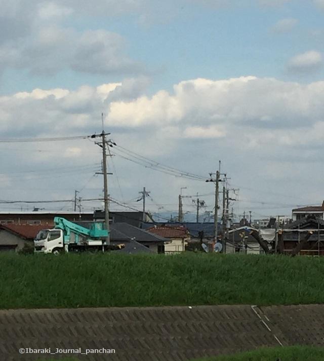 安威川伐採の様子IMG_7978