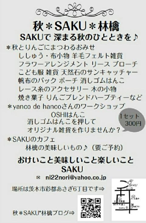 SAKU21534729134808