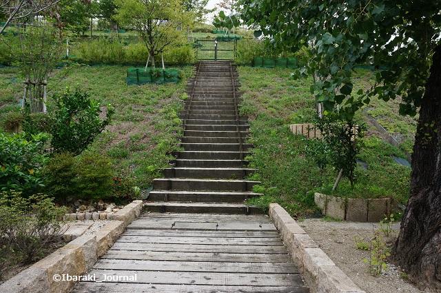 彩都にあった階段1DSC06467